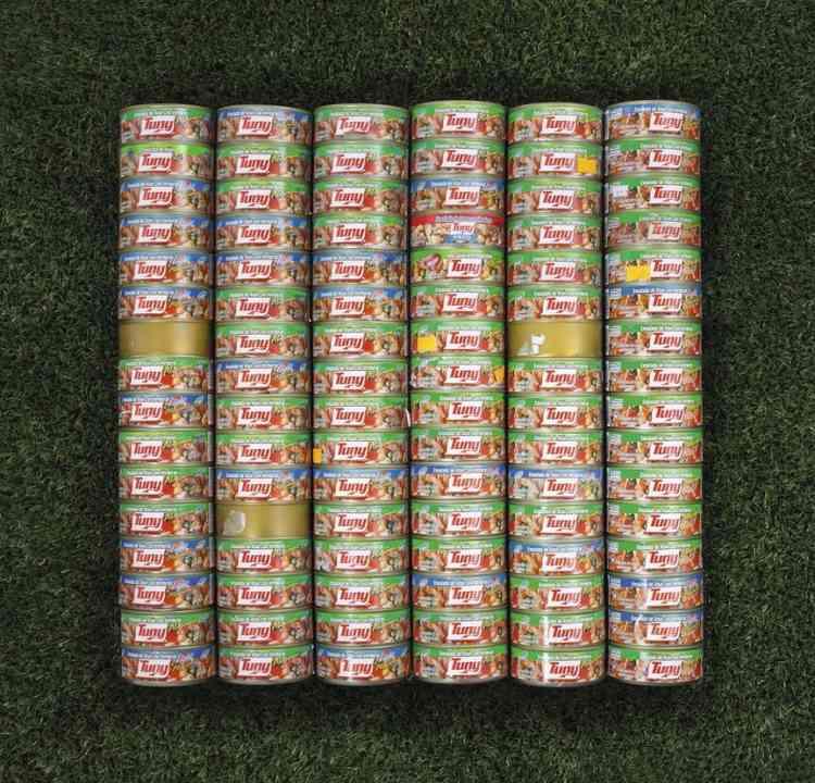 Les boîtes de thon, précieuses sources de protéines, tombent sous la qualification de contrebande.