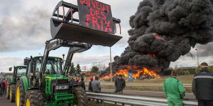 Manifestation d'agriculteurs à Vesoul (est de la France) contre la chute des prix agricoles, le 29 janvier 2015.