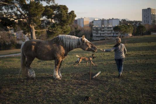A la ferme du Pin de Marseille, Marie avec son cheval et son chien, le 20 janvier 2016.