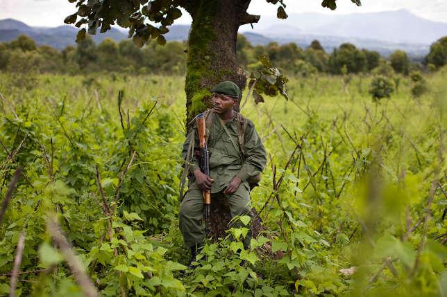La région du Kivu, dans l'est du pays, reste encore aujourd'hui une zone sensible. Ici, en 2008, un militaire des forces gouvernementales au Kivu.