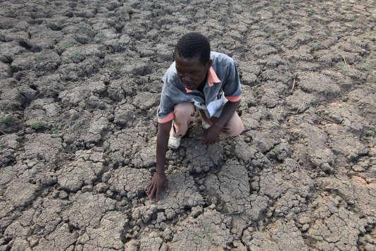 Un Zimbabwéen près de ce qui était auparavant un point d'eau. La sécheresse frappe durement le pays depuis plusieurs années.