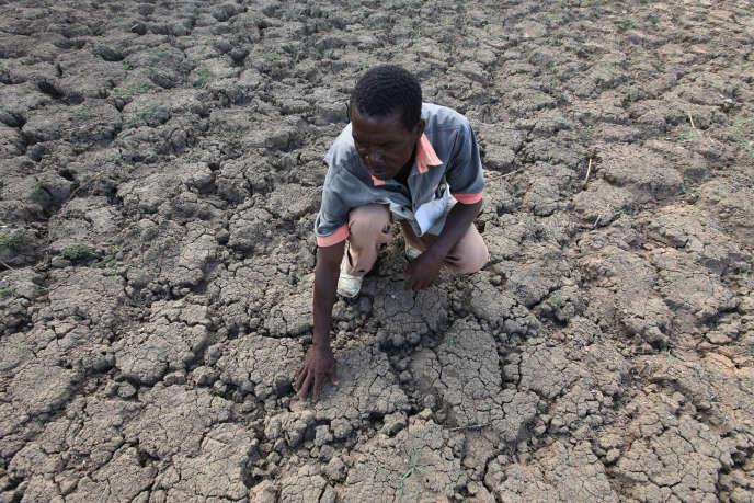 Last Zimaniwa, dans un lieu où il peut habituellement recueillir de l'eau, le 29 janvier 2016 à Chivi, au Zimbabwe.