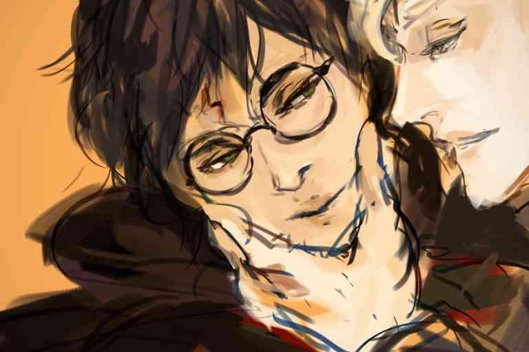 Harry Potter et Draco Malfoy, pourtant ennemis dans l'œuvre de J.K. Rowling, représentent un couple très populaire auprès des « shippers ».