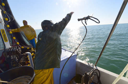 Des pêcheurs au large de Gruissan (Aude). A la différence de l'Atlantique, la Méditerranée n'est pas soumise à des quotas par espèce de poissons.