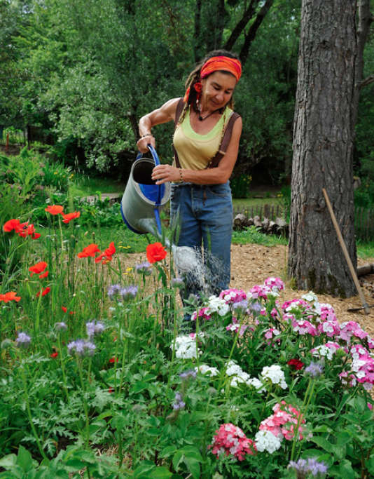 Les jardins bios dans lesquels sont organisés les stages de Terre vivante.