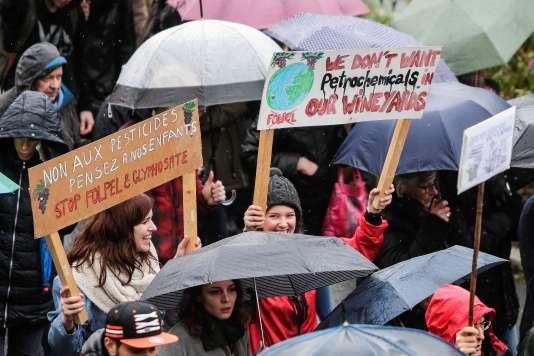 Environ 600 personnes ont manifesté, dimanche 14 février, à Bordeaux, contre l'usage des pesticides.