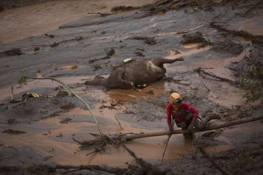 Un sauveteur à la recherche de survivants dans le petit village de Bento Rodrigues englouti par la coulée de boue le 8 novembre 2015.