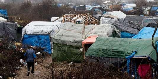 """Dans la """"jungle"""" de Calais, le 22 février 2016."""