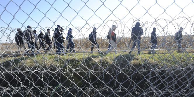 Des migrants le long de la frontière entre la Serbie et la Hongrie, le 22 février 2016.