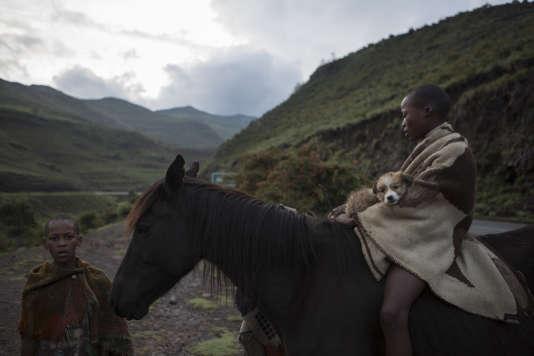 Des enfants rentrent des prairies où ils ont conduit le bétail près de la rivière de Malibamatso au Lesotho.