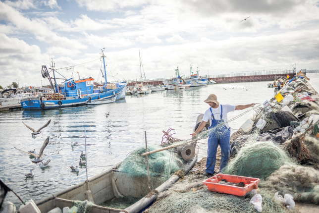 Au départ du port d'Olhao, des bateaux se rendent au paradisiaque parc naturel de la Ria Formosa.