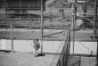Des détenus s'interpellent à travers les grilles et barbelés séparant les cours du camp n°6 à Guantanamo, le 20 août 2014.