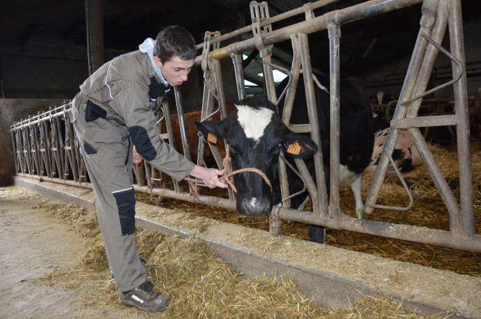 Au lycée agricole catholique de Marvejols, en Lozère, les lycéens ne s'imaginent pas vivre de la même façon que leurs parents, mais continuent à rêver au métier d'agriculteur.