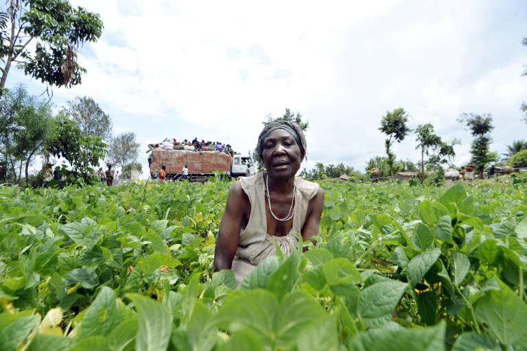 Une fermière congolaise, à Kiwanja, en République démocratique du Congo.