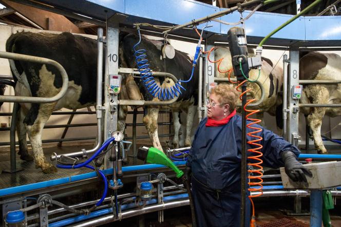 La trayeuse rotative apporte un grand confort à Christine et Claude Marchais mais l'investissement a failli leur coûter la ferme.