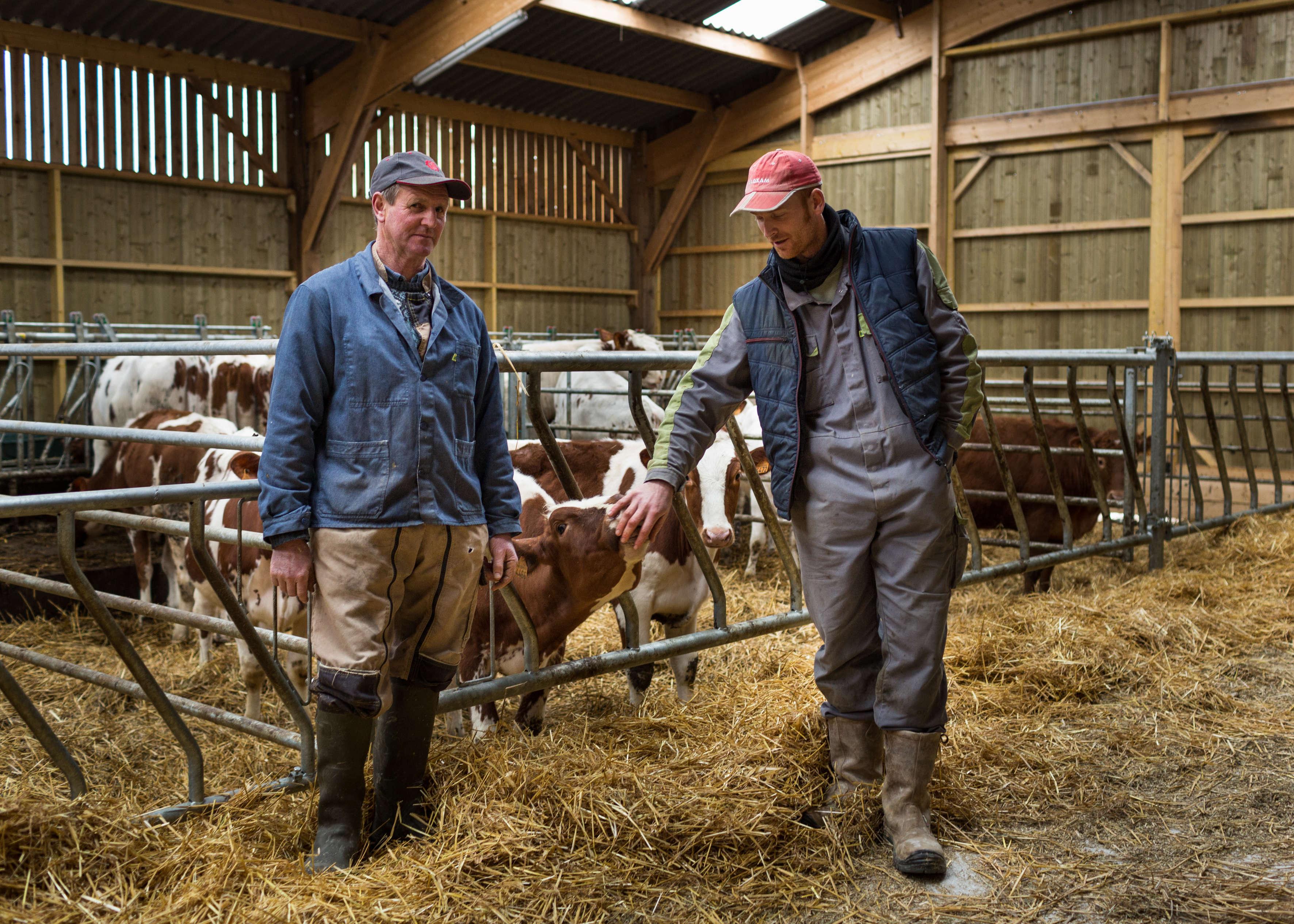 Nicolas Floc et son père, Jean-Paul Floc. D'après la Chambre d'agriculture de Rennes, 30 % des installations se font désormais hors cadre familial.