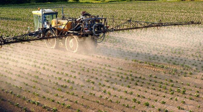 Un agriculteur répand des pesticides à base de plantes dans son champ de pommes de terres, le 30 mai 2012, à Godewaersvelde (Nord)