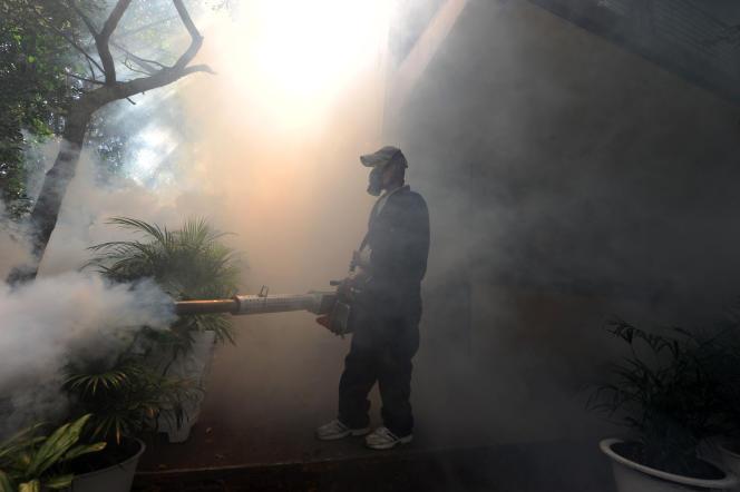 Le personnel du ministère de la Santé asperge les lieux d'insecticide à Tegucigalpa, la 1er février 2016.