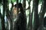 """Yinniang (Shu Qi) dans le film taïwanais de Hou Hsiao-hsien, """"The Assassin""""."""