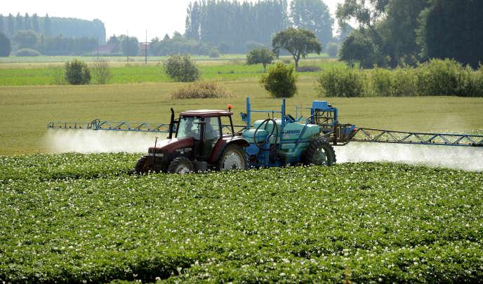 Pulvérisation de pesticides à Vimy, près de Lens, en juin 2014.