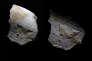 Fragment de silex dont l'enveloppe comprend une gravure d'oiseau vieille de 31000 à 35000  ans (Aurignacien), découvert sur le site de Cantalouette II à Bergerac (Dordogne) lors d'une fouille de l'Institut national de recherches archéologiques préventives (INRAP). Deux sources d'éclairage différentes sont représentées pour faire ressortir la gravure en bas relief.