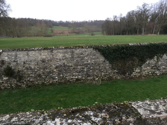 Le domaine de Grignon (Yvelines), son parc, ses bois, son arboretum, un site naturel de référence.
