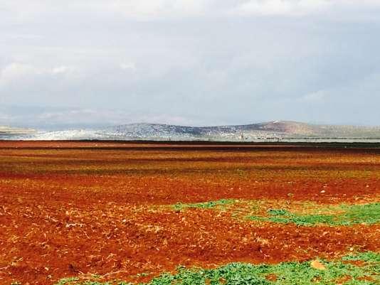 Les champs de Jemal, le mur et, derrière, les camps de Syrie.