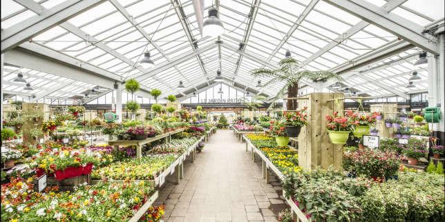 Les fran ais aiment le jardinage pas les jardineries for Jardinage le monde