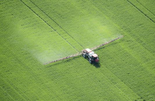 Vue aérienne de l'application du glysophate par pulvérisation, Maryland, Etats-Unis, 19 mai 2014.