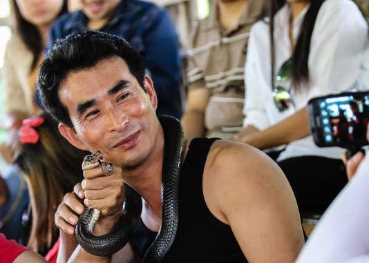 Les touristes peuvent embrasser un cobra en Thaïlande, et prendre dans de nombreux pays les traditionnelles photos avec des serpents.