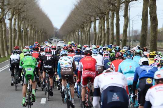 Le peloton de cyclistes, le 27 mars 2016, pendant la 78e édition de la course Gand-Wevelgem.