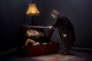 """""""Le Syndrome de Cassandre"""",  un spectacle de et avec Yann Frisch, coécrit avec Raphaël Navarro."""