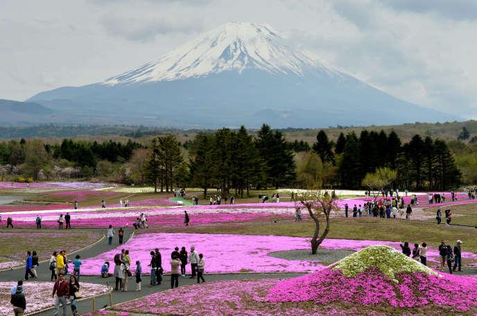 Parc au pied du mont Fuji, au Japon, le 8 mai 2014.