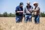 Des fermiers australiens, à Cowra, en Australie, en 2015.
