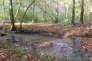 La Clauge, en eau à l'automne, puis sèche au printemps, à Chissey-sur-Loue, dans le Jura.