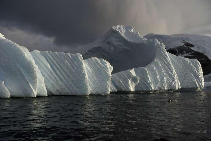 Conséquence de la fonte des glaces, les océans et les mers de la planète ont monté d'environ 14 centimètres entre 1900 et 2000, selon une étude parue en février dans les Comptes Rendus de l'Académie américaine des sciences (ici, un iceberg dans l'Antarctique, le 4 mars 2016).
