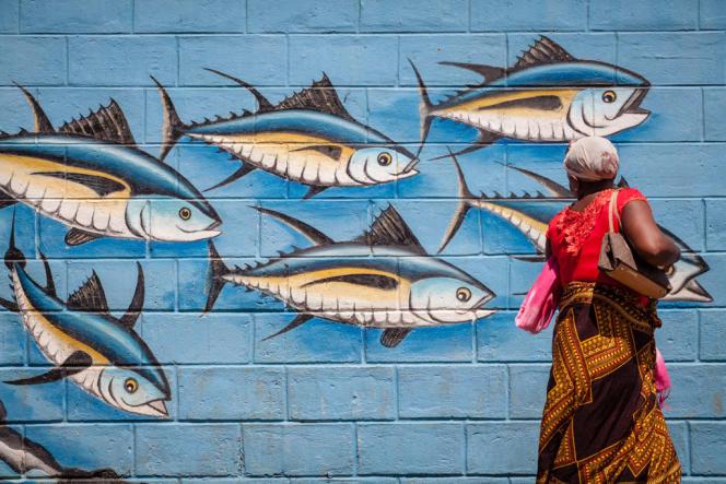 Avec ses infrastructures portuaires et ses conserveries, la pêche industrielle est devenue une ressource économique importante pour les Seychelles, mais aussi pour les îles voisines, comme ici à Diego Suarez, à Madagascar.