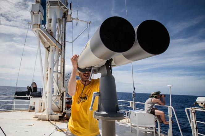 Sur le pont supérieur de l'«Esperenza», à la jumelle ou avec une paire de lunettes binoculaires, l'équipe de Greenpeace se relaie pour traquer les dispositifs de concentration des poissons, ces engins de pêche qu'utilisent les thoniers.