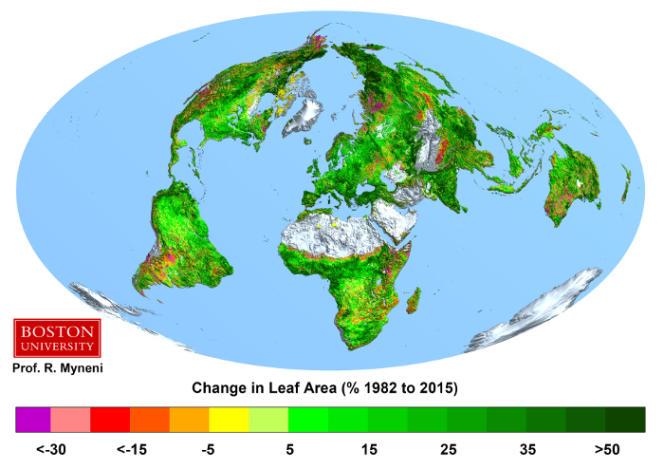 Evolution du couvert foliaire entre 1982 et 2009 (en %).