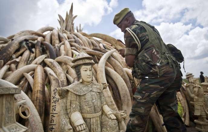Le Kenya a brûlé 105 tonnes d'ivoire en avril 2016 pour encourager les efforts contre le braconnage d'éléphants.