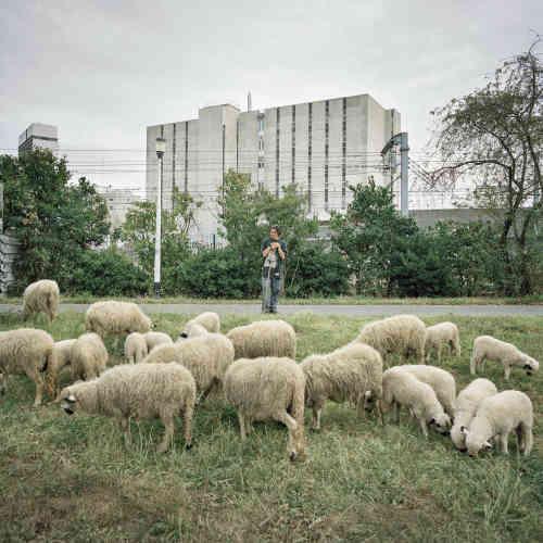 A Nanterre, dans les Hauts-de-Seine, la couverture de l'autoroute A14, en friche, a été rebaptisée « champ de La Garde » par les « agropoètes » de la Ferme du Bonheur, située à proximité.