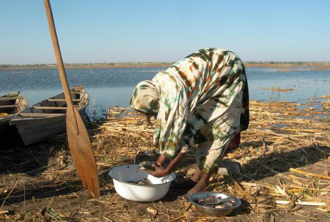 Au bord du lac Tchad, en 2009.