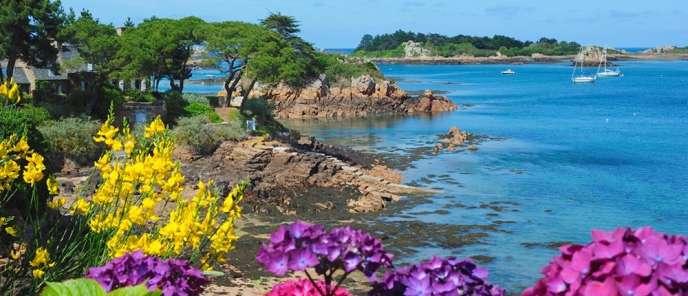 Le climat doux de Bréhat en fait une île fleurie.
