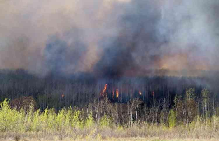 Les pompiers estiment que le feu est difficile à combattre à cause du vent qui alimente les flammes.
