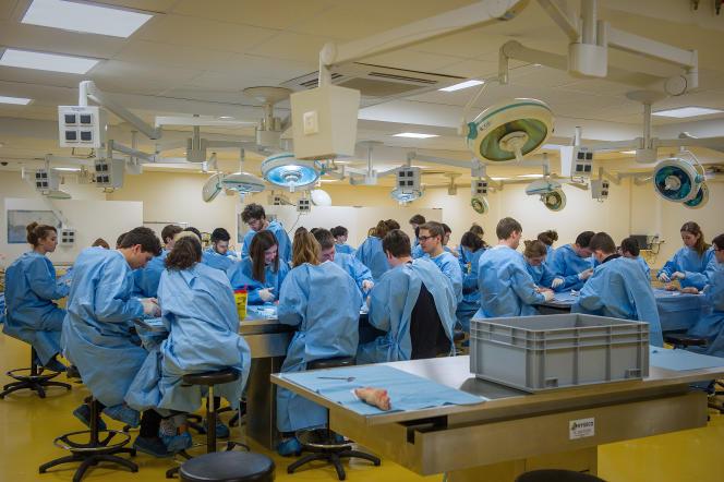 Des élèves de deuxième année de médecine à la faculté de médecine et pharmacie de Poitiers, en février 2016.