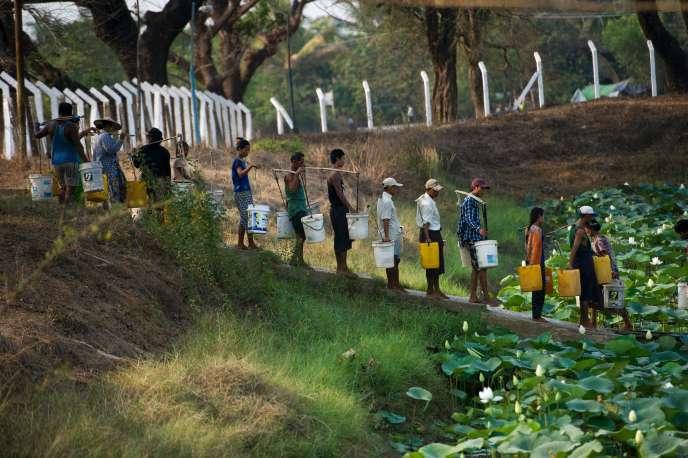 En Birmanie, des habitants de la région de Rangoun viennent se ravitailler en eau dans un lac. Avec des températures qui atteignent par endroits 40°C, le pays connait une sécheresse en partie due aux effets d'El Niño.