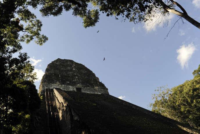 Ceci n'est pas la cité maya découverte par un adolescent, mais un temple bien réel du site archéologique de Tikal, au Guatemala.