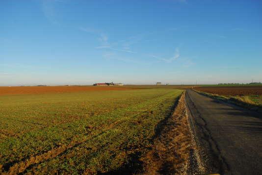 Une plaine agricole en Seine-et-Marne
