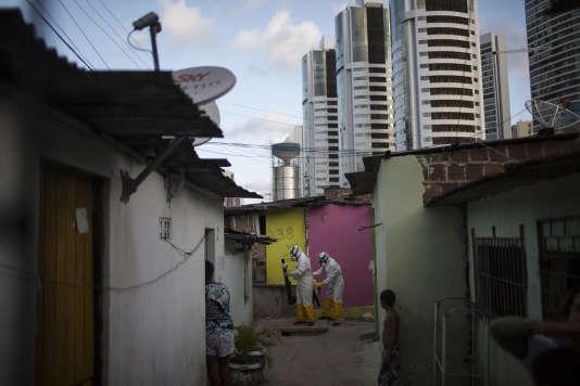 Des agents municipaux vaporisent de l'insecticide dans un quartier de Recife, au Brésil, le 26 janvier 2016.