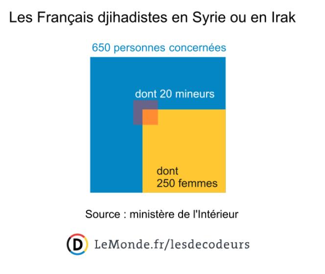 Les Français djihadistes en Syrie ou en Irak.